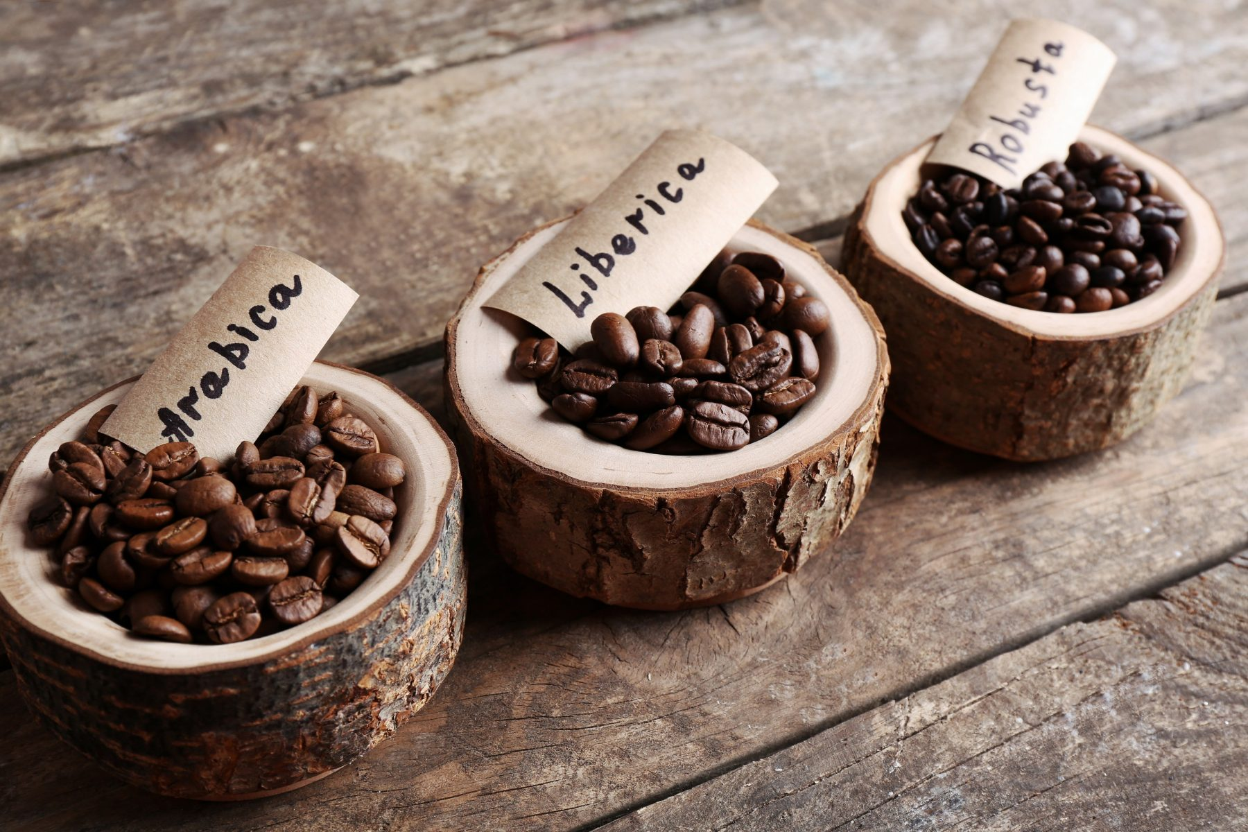 coffee options in Bowling Green